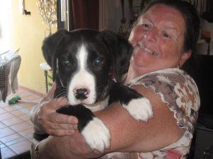 Paddy and Mummy - Day 3
