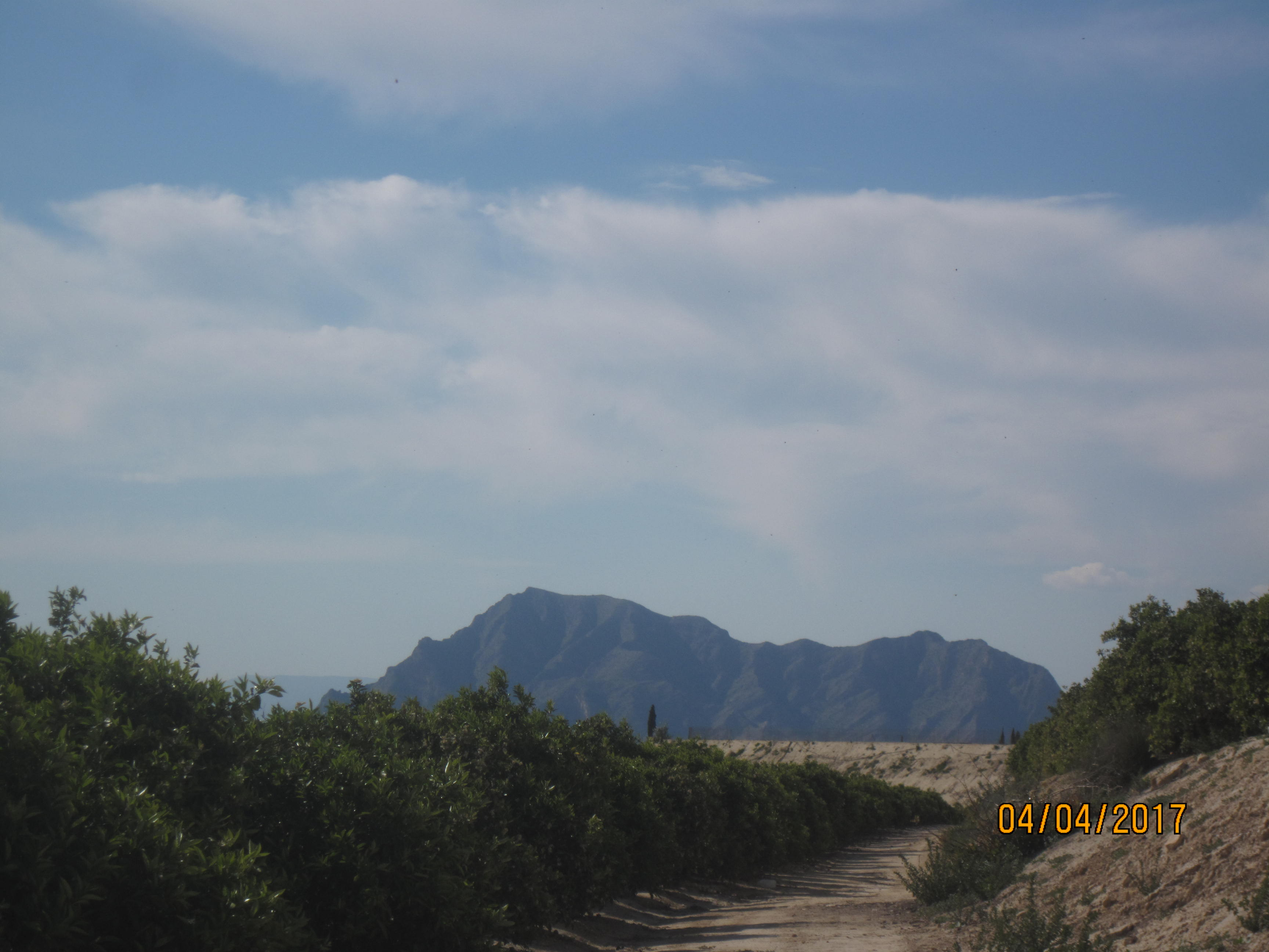 Mountain, snake 004